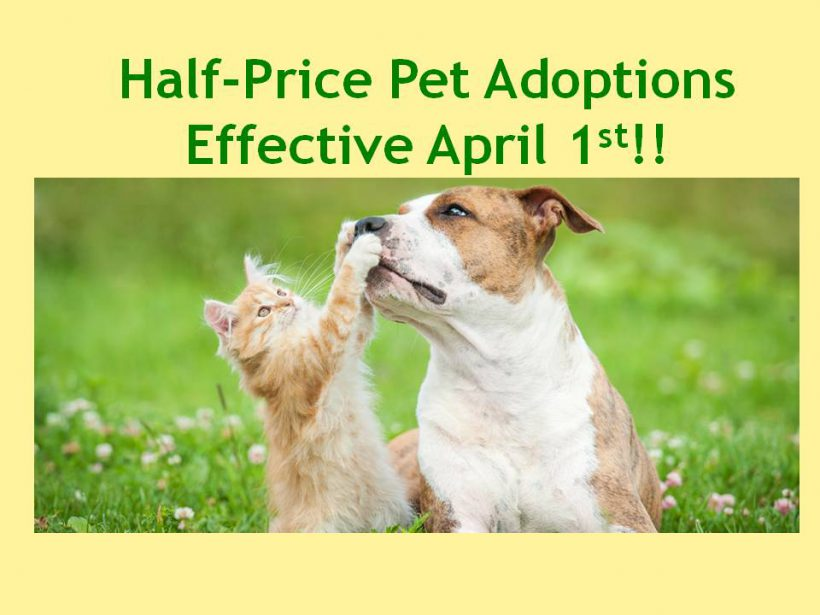 Half-Price Pet Adoptions