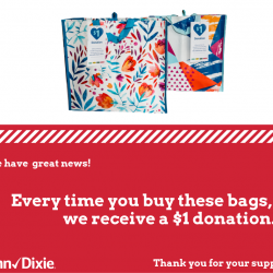 Winn Dixie Community Bag Program